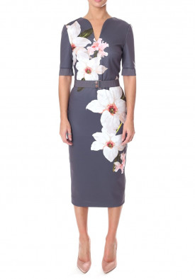 Ted Baker Bisslee Chatsworth Floral Print Bodycon Dress