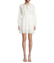 Alexis Artemis Tucked Silk-Cotton Lace Mini Dress