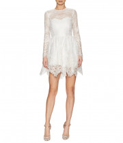 Alexis Malin Long-Sleeve Lace Mini Dress