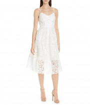 Ted Baker London Valens Lace Midi Dress